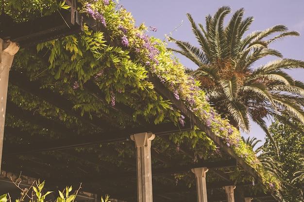 Terrasse sur le toit d'un restaurant européen avec des palmiers dans le ciel