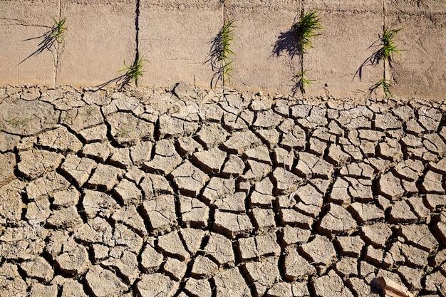 Terre d'argile de fossé d'irrigation séchée dans les champs d'albufera