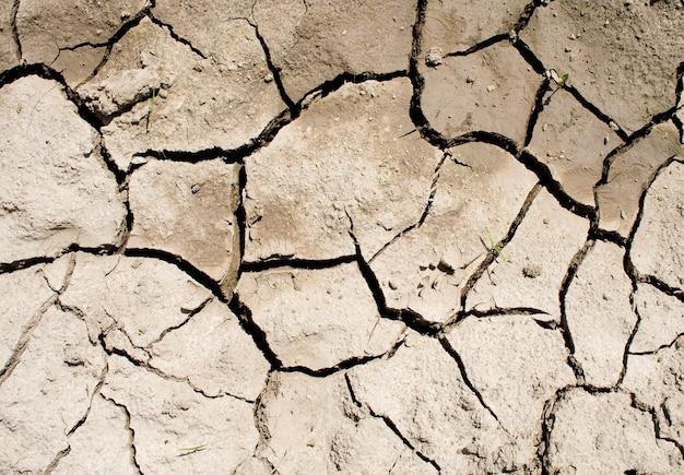Terre craquelée et desséchée après une sécheresse