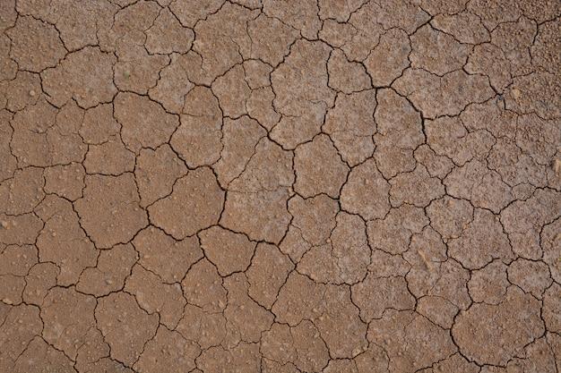 Terre fissurée pour le fond
