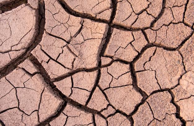 Terre fissurée, sol fissuré