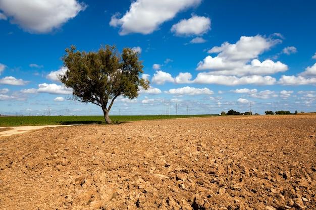 Terre labourée, pour grandir et produire une nouvelle récolte