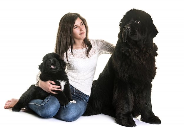 Terre-neuve chiens et adolescents