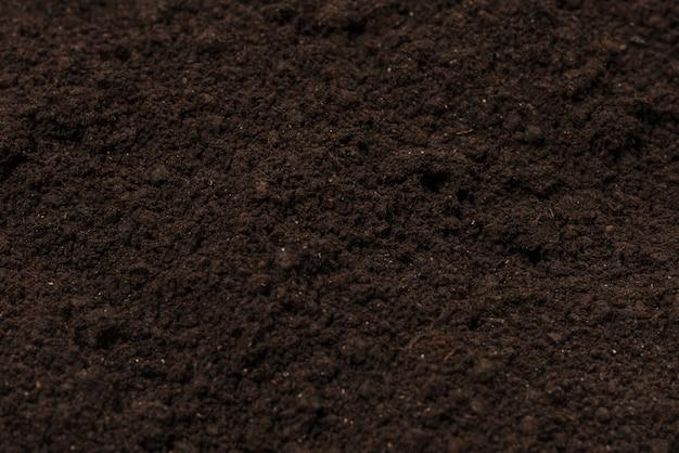 Terre noire pour fond de plante.