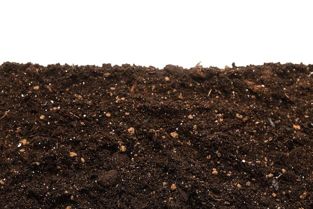 Terre noire pour plante isolée sur blanc