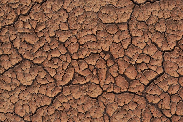 Terre sèche fissurée pendant la saison des pluies à cause du manque de pluie manque d'eau texture fissurée du sol