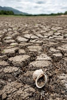 Terre sèche fissurée sans eau