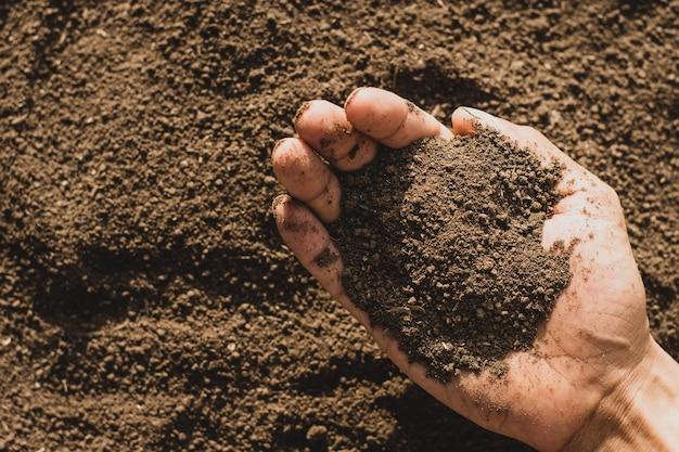 Un terreau fertile entre les mains d'un agriculteur.