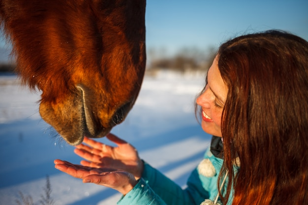 Tête de cheval et les mains d'une fille se bouchent. elle nourrit le cheval rouge