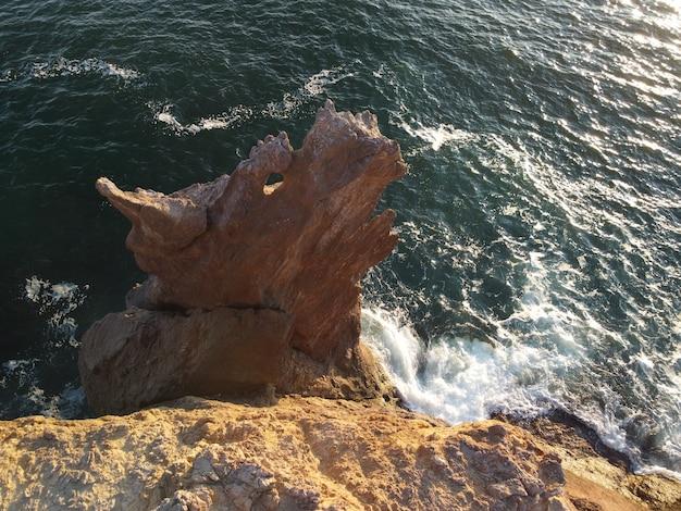 La tête de dragon surgit de l'eau la formation rocheuse ou de lave avec la forme d'un grand animal populaire