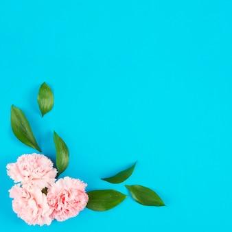 Têtes de fleurs avec des feuilles dans le coin