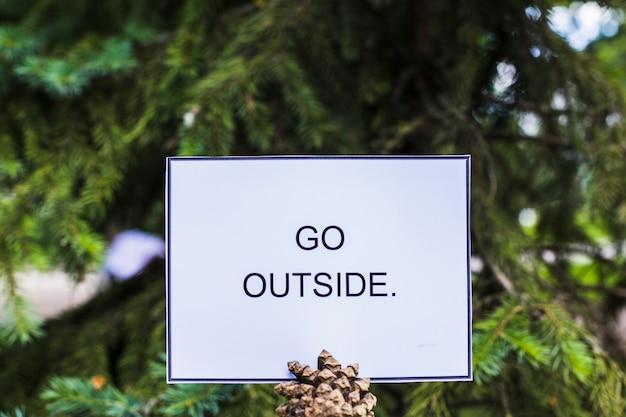 Texte aller carte extérieure sur la pomme de pin devant le sapin