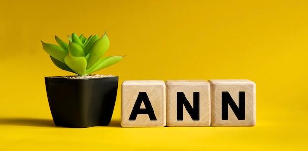 Texte ann sur une surface jaune. cubes en bois et fleur dans un pot.