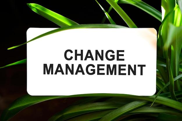 Texte de gestion du changement sur blanc entouré de feuilles vertes