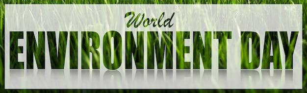 Texte de la journée mondiale de l'environnement sur une bannière blanche sur fond d'herbe verte.