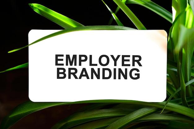 Texte de marque employeur sur blanc entouré de feuilles vertes
