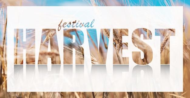 Texte de récolte du festival sur une bannière blanche sur fond de blé.