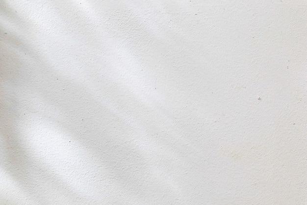 Textuer de fond abstrait noir et blanc de feuille d'ombres sur un mur de béton.