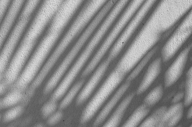 Texture abstraite noir et blanc de feuille d'ombres sur un mur de béton.