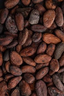 Texture alimentaire des fèves de cacao
