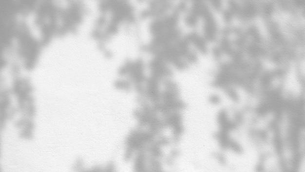 Texture d'arrière-plan abstraite des feuilles d'ombres sur un mur de béton