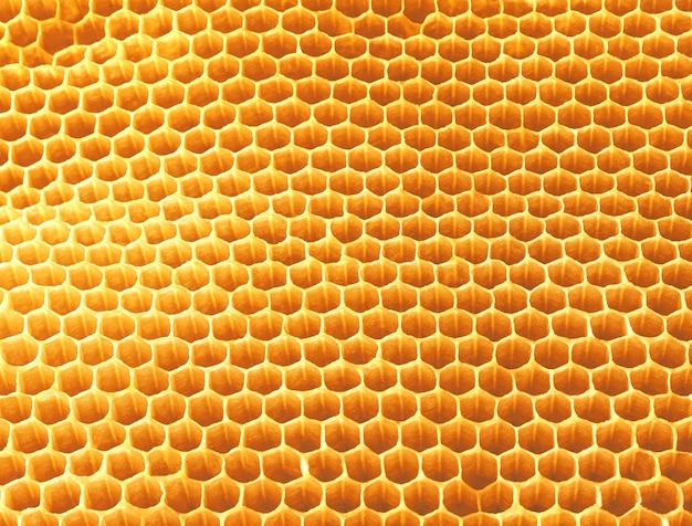 Texture d'arrière-plan et motif de nid d'abeille de cire d'une ruche d'abeilles
