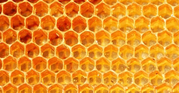Texture d'arrière-plan et motif d'une section de nid d'abeille de cire