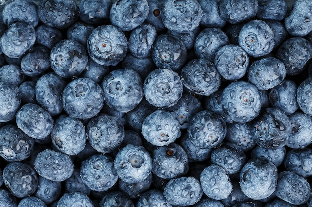 Texture de bleuets mûrs avec des gouttes de rosée