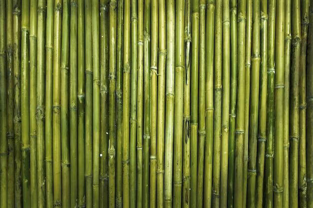 Texture de bois de bambou vert pour mur de jardin de défense