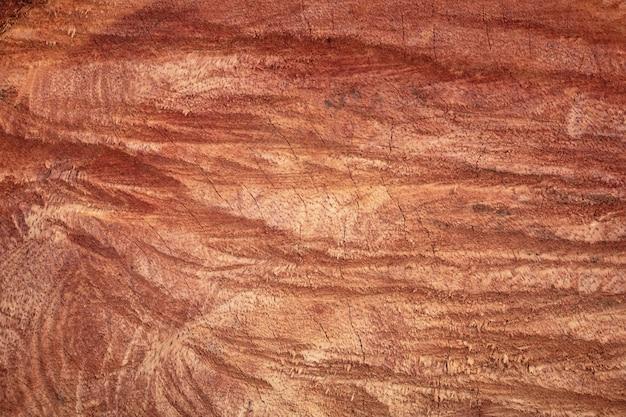 Texture de bois dur avec fond