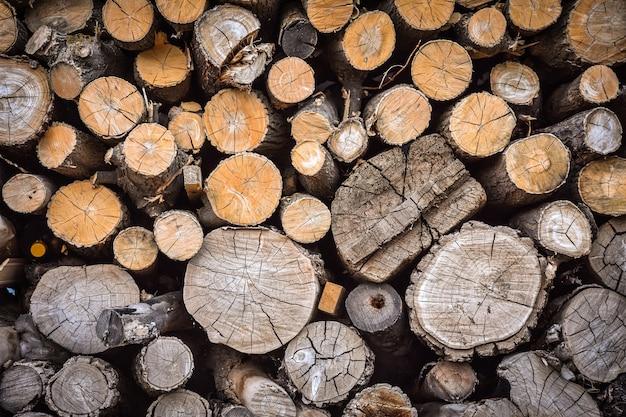 Texture en bois, fond de bûches,