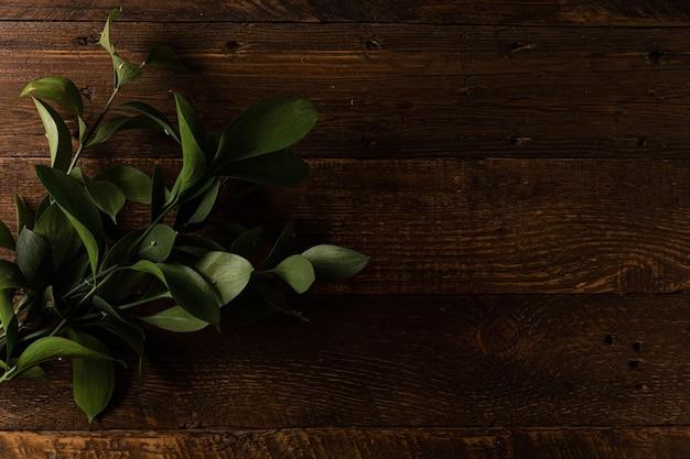Texture bois naturel. fond en bois