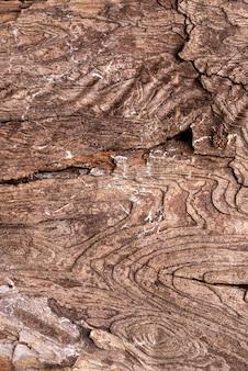 Texture en bois naturel à plat