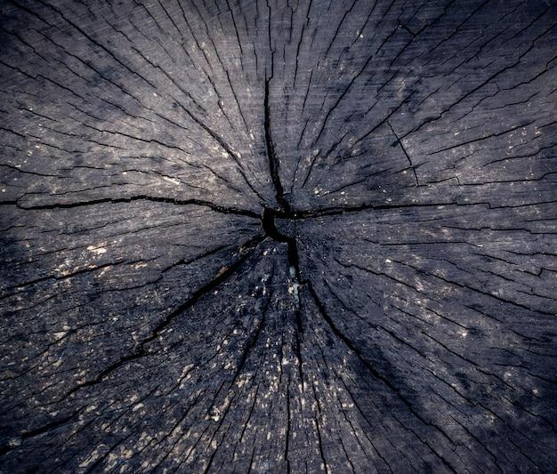 Texture en bois pour votre conception.