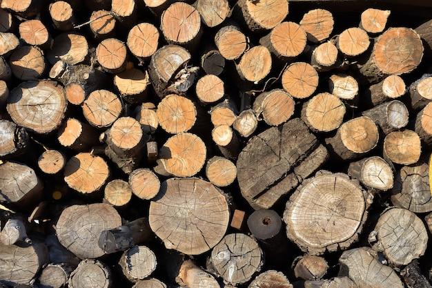 Texture de bois scié, fond de bois de chauffage empilé