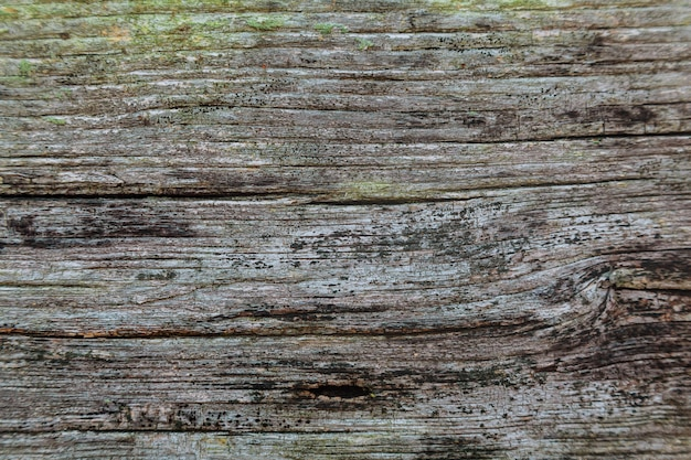 Texture en bois de table