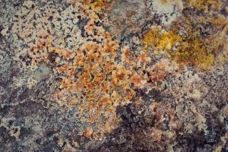 Texture boue géothermique
