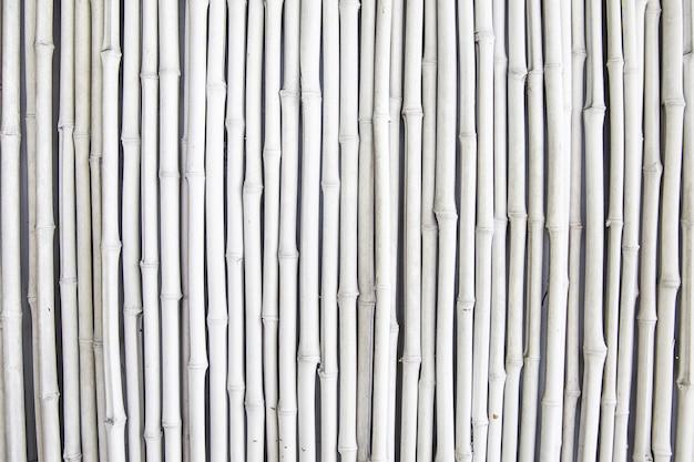 Texture de brousse