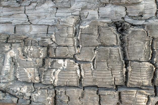 Texture de charbon de bois brûlé