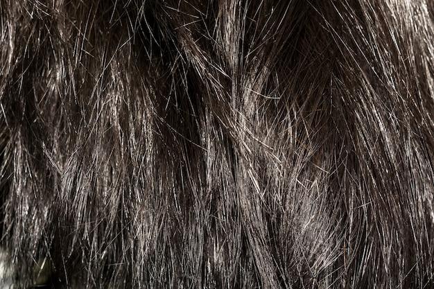 Texture de cheveux brun foncé