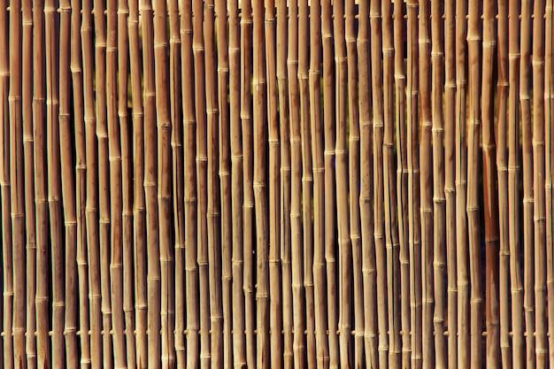 Texture de clôture de bambou