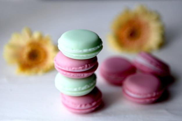 Texture colorée de macaron savoureux. une délicatesse sucrée française, une variété de macarons colorés en gros plan avec des fleurs sur fond blanc.