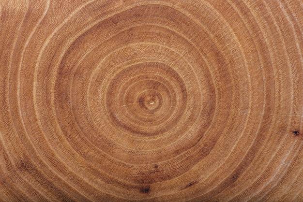 Texture de dalle de bois de frêne avec anneaux annuels, fond
