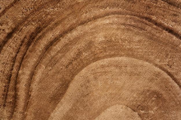 Texture détaillée en bois de tronc d'arbre coupé