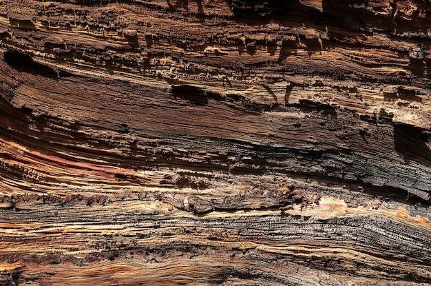 Texture du bois ancien, milieux naturels