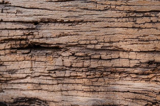 Texture du bois ancien, surface rugueuse, motif naturel