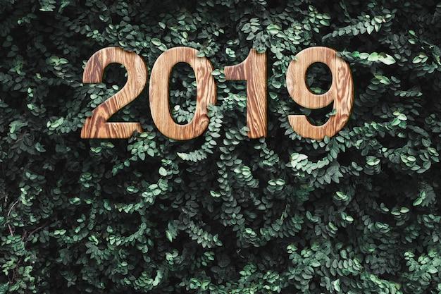 Texture du bois année 2019 sur mur de feuilles vertes