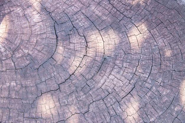 Texture du bois brun