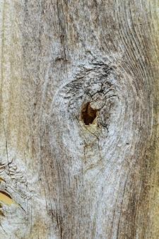 Texture du bois sur fond naturel