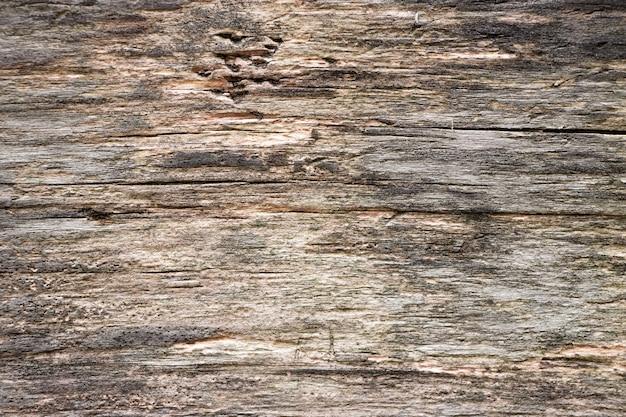 Texture du bois. fond vieux panneaux